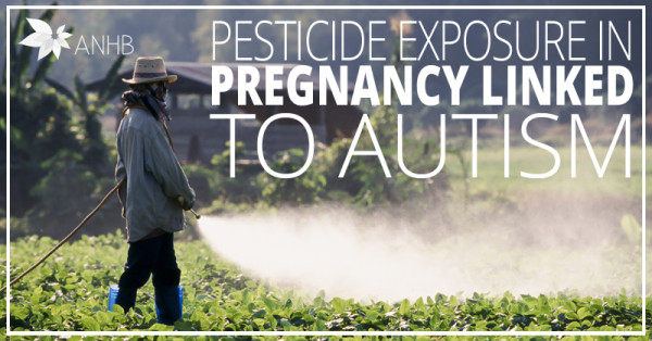 Pesticide Exposure In Pregnancy Linked To Autism Updated