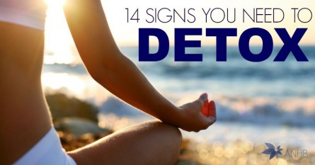 14 Signs You Need to Detox