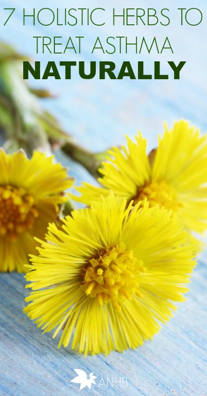 7 Holistic Herbs to Treat Asthma Naturally #asthma #Health #naturalremedies #Herbs