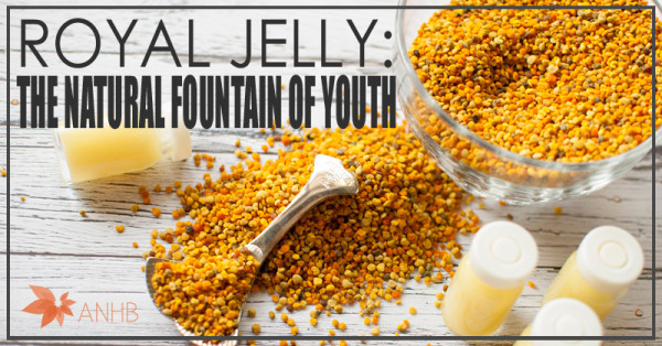 Royal Jelly: The Natural Fountain of Youth