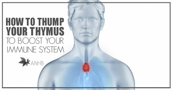 How to Thump Your Thymus and Boost Your Immune System