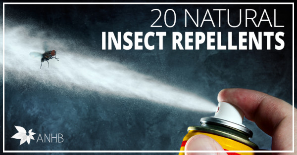 20 Natural Insect Repellents