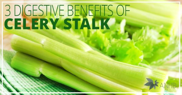 3 Digestive Benefits of Celery Stalk