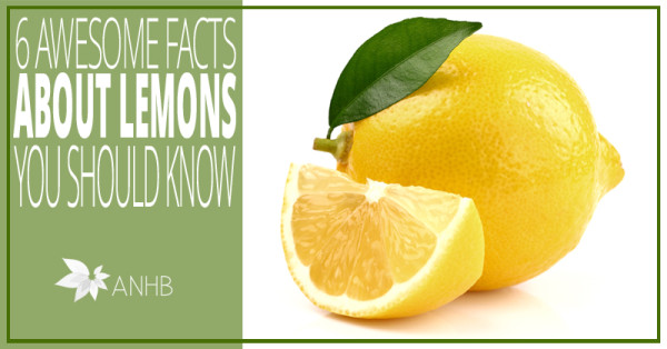 6 Awesome Facts About Lemons You Should Know