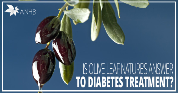Is Olive Leaf Nature's Answer to Diabetes Treatment?