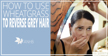How to Use Wheatgrass to Reverse Grey Hair