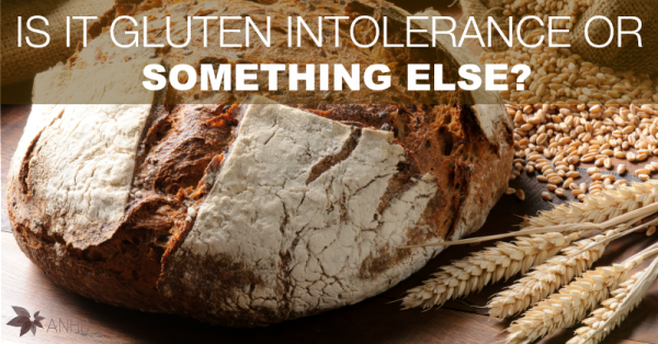 Is It Gluten Intolerance or Something Else?