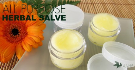All Purpose Herbal Salve