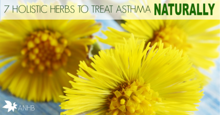 7 Holistic Herbs to Treat Asthma Naturally