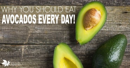 Why You Should Eat Avocados Every Day